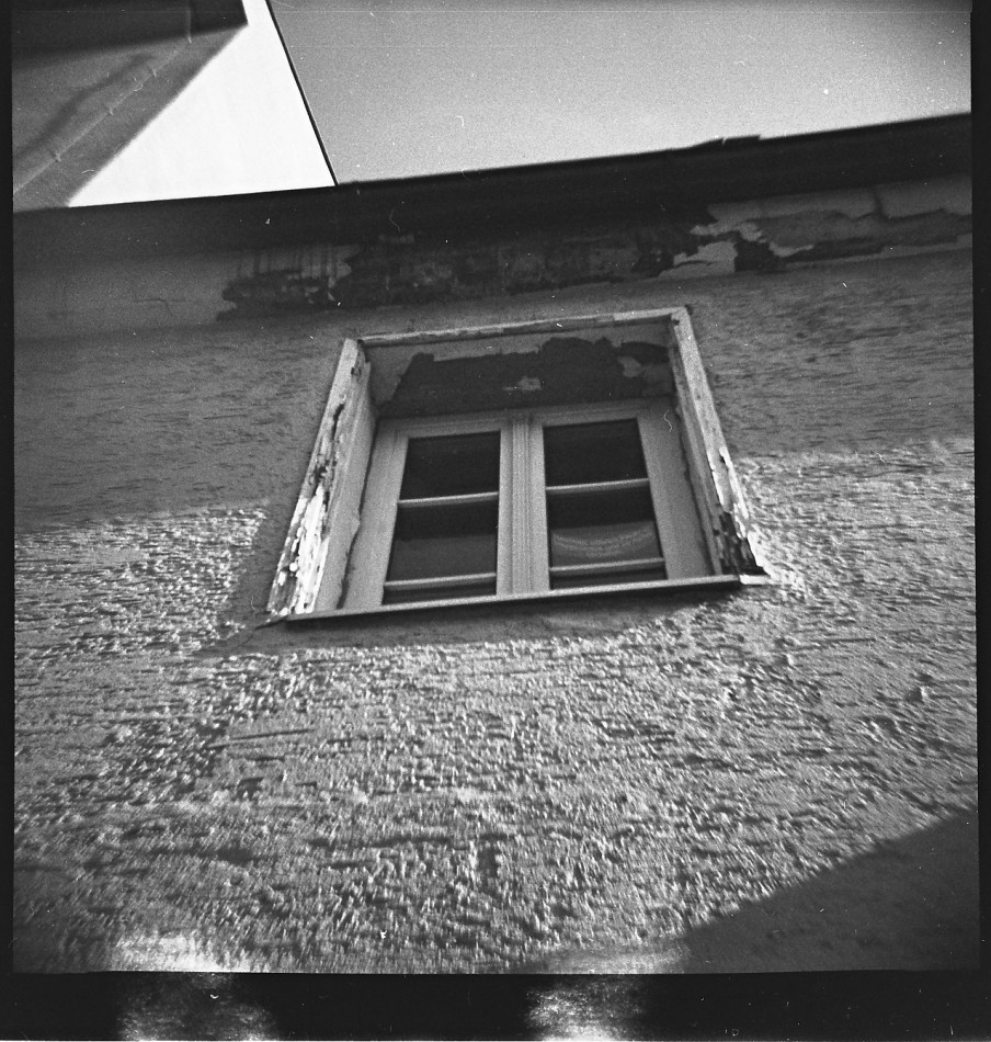 Monochrome film